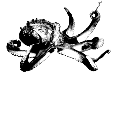 CodingKaiju